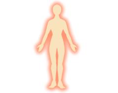人体イメージ